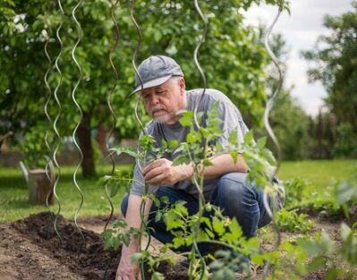 Is Gardening Physically & Mentally Beneficial for Aging Adults in Amarillo, TX